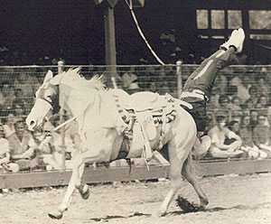 Jw Stoker King Of The Cowboy Trick Ropers